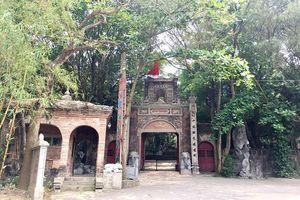 Vi phạm đất rừng tại huyện Sóc Sơn: Vì sao Việt Phủ Thành Chương chưa bị xử lý?