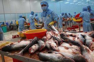 Cơ hội cho doanh nghiệp Việt 'tấn công' thị trường Canada