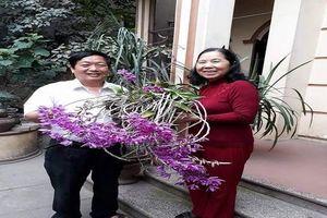 Bài thơ về các dáng thế cây cảnh của Giáo sư Trần Duy Quý