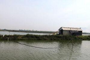 Hà Tĩnh: Mất an toàn lưới điện tại nhiều hồ tôm