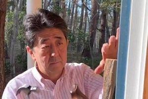 Thủ tướng Nhật Bản tự tay lắp miếng gõ cửa gây 'bão mạng'