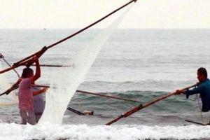 Săn 'lộc biển' với ngư cụ tự chế, ngư dân bỏ túi tiền triệu mỗi ngày