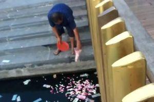 Chủ tịch tỉnh Thừa Thiên - Huế: 'Không thể người nhặt rác, người xả rác được'