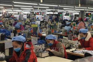 Hợp tác thúc đẩy xanh hóa ngành dệt may Việt Nam