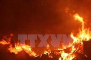 33 người thiệt mạng vì cháy rừng ở Sudan