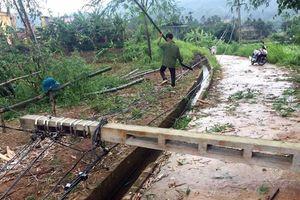 Lào Cai: Lốc xoáy gây thiệt hại khoảng 500 triệu đồng