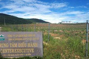 Hà Tĩnh: Rà soát tổng thể những sai phạm từ Dự án chăn nuôi bò Bình Hà