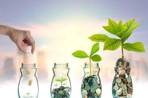 Bí mật cách kiếm tiền của người giàu: không để đồng tiền 'nằm bất động'