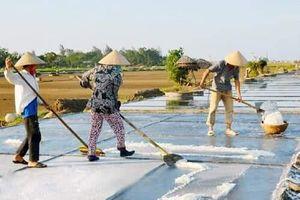 Kỳ Hà (TX Kỳ Anh, Hà Tĩnh) tập trung mọi nguồn lực để về đích nông thôn mới