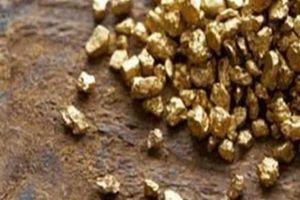Con sông đắt đỏ nhất TG, đáy sông chứa đầy vàng lấp lánh
