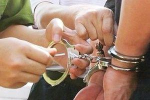 Bắt giam nguyên Trưởng ban Quản lý rừng phòng hộ huyện Yên Thành