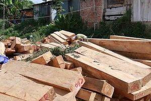 Từ 1/6: Xuất khẩu gỗ sang EU phải đi kèm giấy phép FLEGT