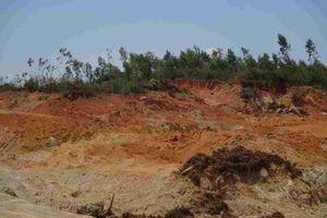 Bình Định: Nóng nạn khai thác, vận chuyển đất tại huyện Phù Cát