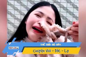 Đòi ăn bạch tuộc sống, cô gái bị bạch tuộc 'xực' lại