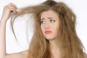 5 'tuyệt chiêu' hồi sinh tóc xơ khô bằng phương pháp tự nhiên ngay tại nhà