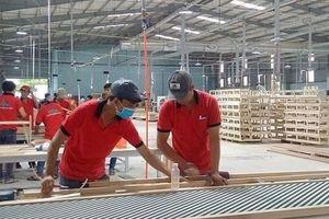 Doanh nghiệp ngành chế biến gỗ gặp khó vì thiếu nhân lực