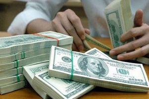 Tỷ giá trung tâm tiếp tục leo cao, USD tại ngân hàng thương mại 'hạ nhiệt'