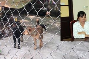 Khởi tố bị can với chủ đàn chó cắn chết bé 7 tuổi ở Hưng Yên