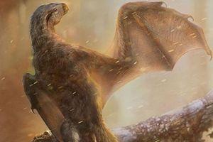 Trung Quốc phát hiện loài khủng long biết bay mới