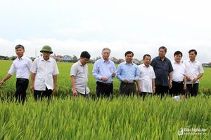 Tổng Công ty CP Vật tư nông nghiệp Nghệ An: Nỗ lực khẳng định thương hiệu