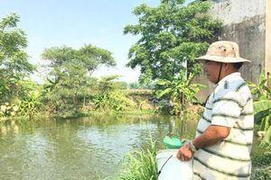 Quảng Nam: Dũng sỹ diệt Mỹ giờ xây được 'biệt phủ' nhờ nuôi cá