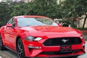 Ford Mustang Premium 2019 đầu tiên cập bến Việt Nam, giá hơn 3,1 tỷ đồng