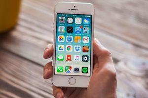 Nhiều mẫu iPhone đời cũ 'đứt gánh' với iOS 13