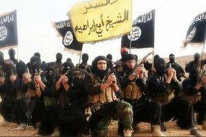 Sụp đổ tại Syria, phiến quân IS 'bành trướng' lãnh thổ tại Ấn Độ