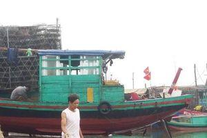 Tàu giã cào 'cày nát' biển, nguy cơ ngư dân Hà Tĩnh thất nghiệp