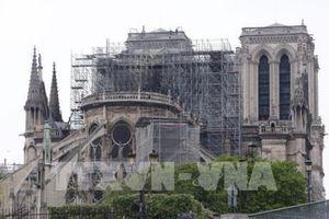 Thông qua dự luật gây tranh cãi về khôi phục Nhà thờ Đức Bà