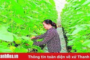 Huyện Lang Chánh đẩy mạnh ứng dụng tiến bộ khoa học - kỹ thuật vào sản xuất nông nghiệp