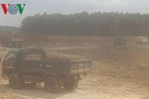 Thi công cải tạo hồ Đá Đen gây hại 1.000 cây ăn trái đúng vụ thu hoạch