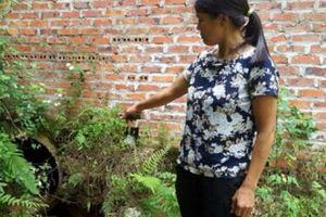 Lạng Sơn: Đình chỉ xưởng chế biến chân gà xả nước thải đỏ lòm