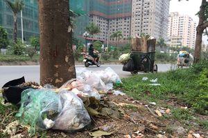 Rác thải bị vứt bừa bãi khiến đường phố Hà Nội nhìn như làng quê