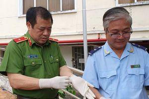 Tướng công an ăn chuối trừ bữa để vây bắt nhóm buôn 500kg ma túy
