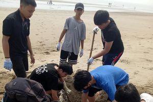 Tình nguyện viên Pháp cùng học sinh chung tay làm sạch bãi biển Cửa Lò