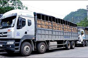 Lạng Sơn: Phân luồng giao thông, đảm bảo hàng hóa xuất khẩu thông suốt
