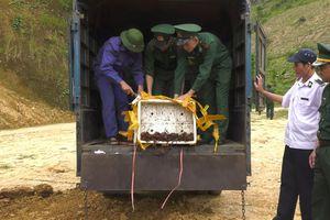 Tiêu hủy 300kg tôm hùm đất và hơn 1 tấn chân gà nhập lậu