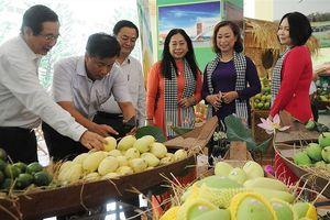 Trung Quốc siết quy định nhập nông sản: Xuất khẩu rau củ quả gặp khó