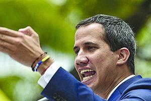 Italia nêu lý do không công nhận 'tổng thống lâm thời' Venezuela Guaido