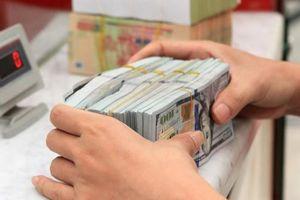 SSI: 'Rủi ro với tỷ giá USD/VND đang gia tăng'