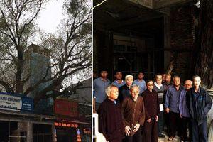 Cây đề trăm tuổi bị dân 'bức tử', xây nhà ôm trọn gốc: Tỉnh Bắc Ninh chỉ đạo giải quyết