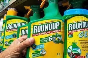 Hơn 13.000 đơn kiện Monsanto vì chất diệt cỏ glyphosate gây ung thư