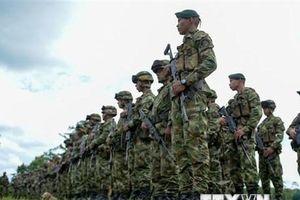 Mỹ hỗ trợ Colombia 160 triệu USD triển khai hiệp ước hòa bình với FARC