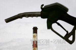 Giá dầu thế giới đi xuống theo đà giảm trên Phố Wall