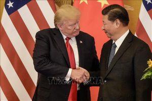 Bộ Ngoại giao Trung Quốc: Chưa có thông tin về cuộc gặp thượng đỉnh Trung - Mỹ