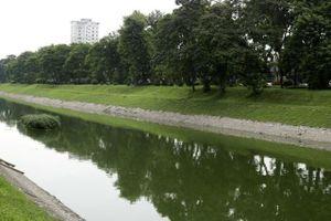 Lý do nước sông Tô Lịch bất ngờ chuyển màu xanh