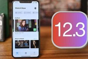 Người dùng đã có thể cập nhật iOS 12.3 của Apple