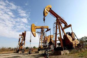 Giá dầu hôm nay 15.5: Tiếp tục lao dốc
