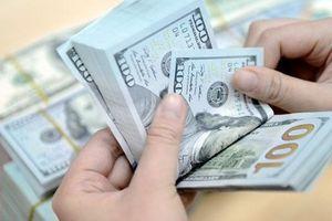 Tỷ giá ngoại tệ 15.5: USD 'nhảy' lên 23.430 VND, tỷ giá neo cao